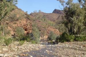 Flinders Ranges - Flinders Ranges